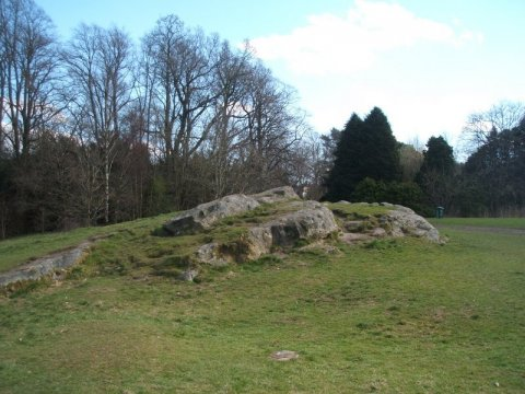 Picnic Rock at Rouken Glen