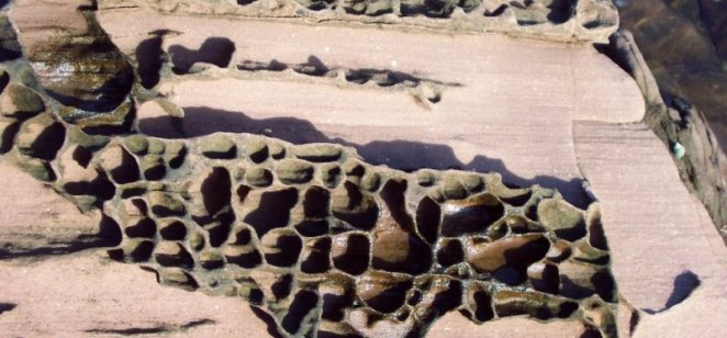 Portencross conglomerate (Devonian)