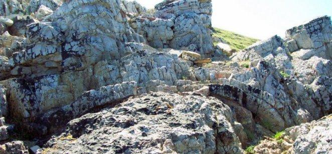 Stromatolites near Durness (Cambrian)